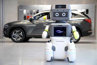 E su questo robot fosse il vostro nuovo concessionario?